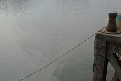 Río Santa Lucía. Foto: Virginia Martínez.
