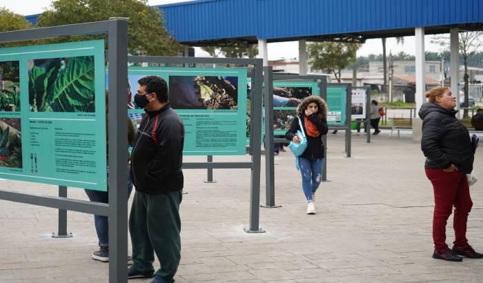 Inauguración de la fotogalería del Cerro, en la Terminal de Ómnibus .